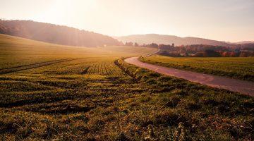 Có nên mua đất bằng vi bằng công chứng không?